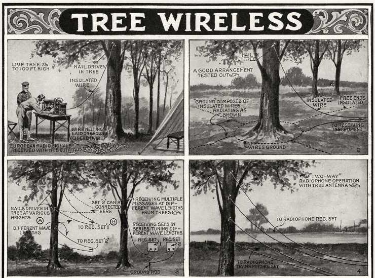 Tree wireless